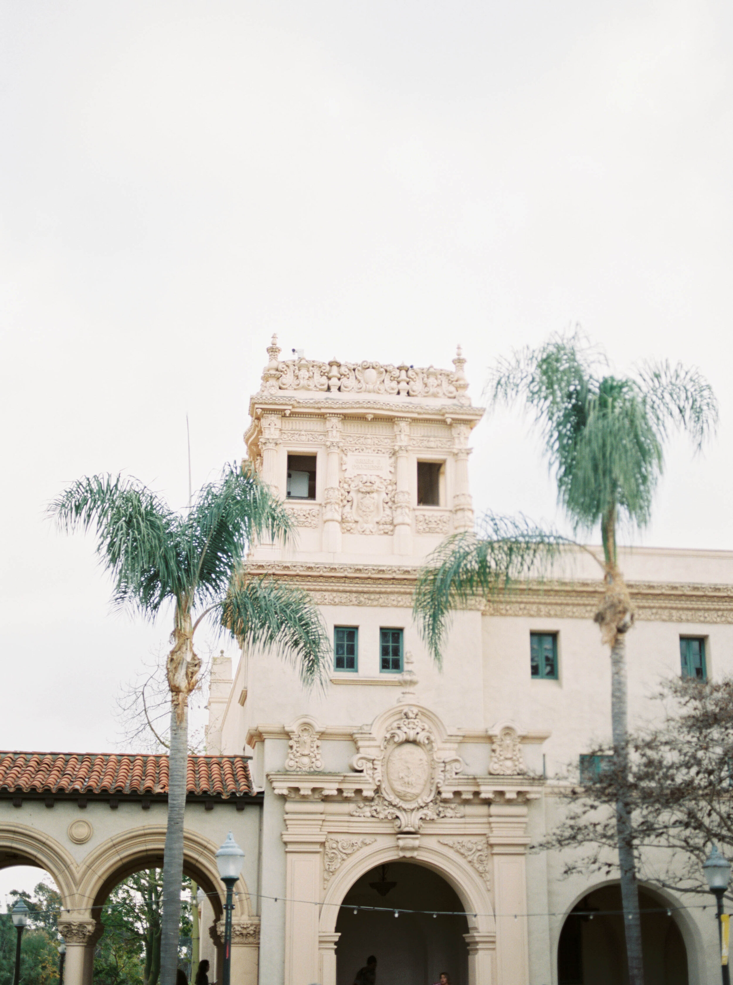 Engagement session on film with stylish gold and black Revolve dress and black suit at Balboa Park in San Diego by Liz Andolina Photography