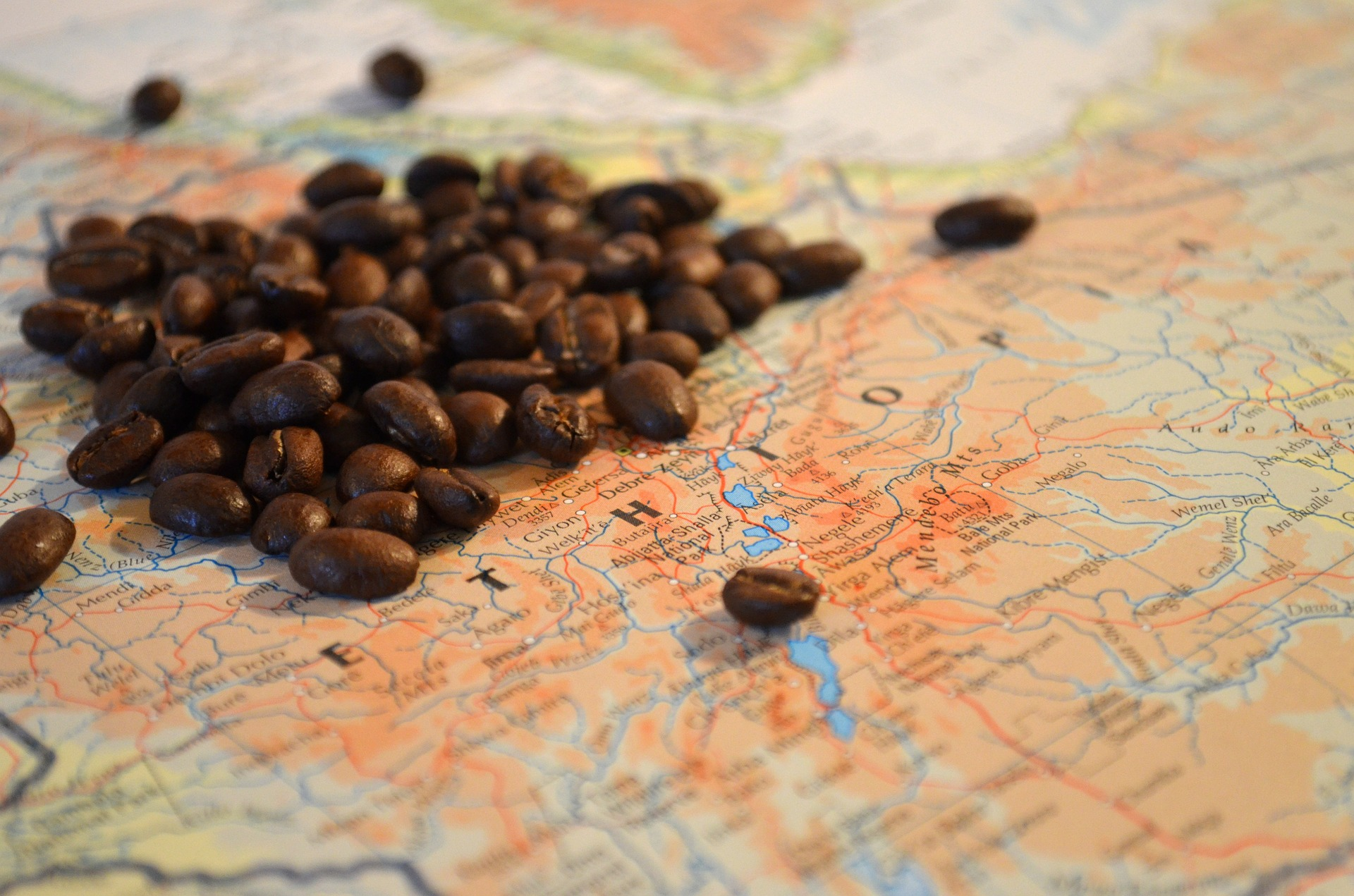 Coffee Capital of the World by John Iglar