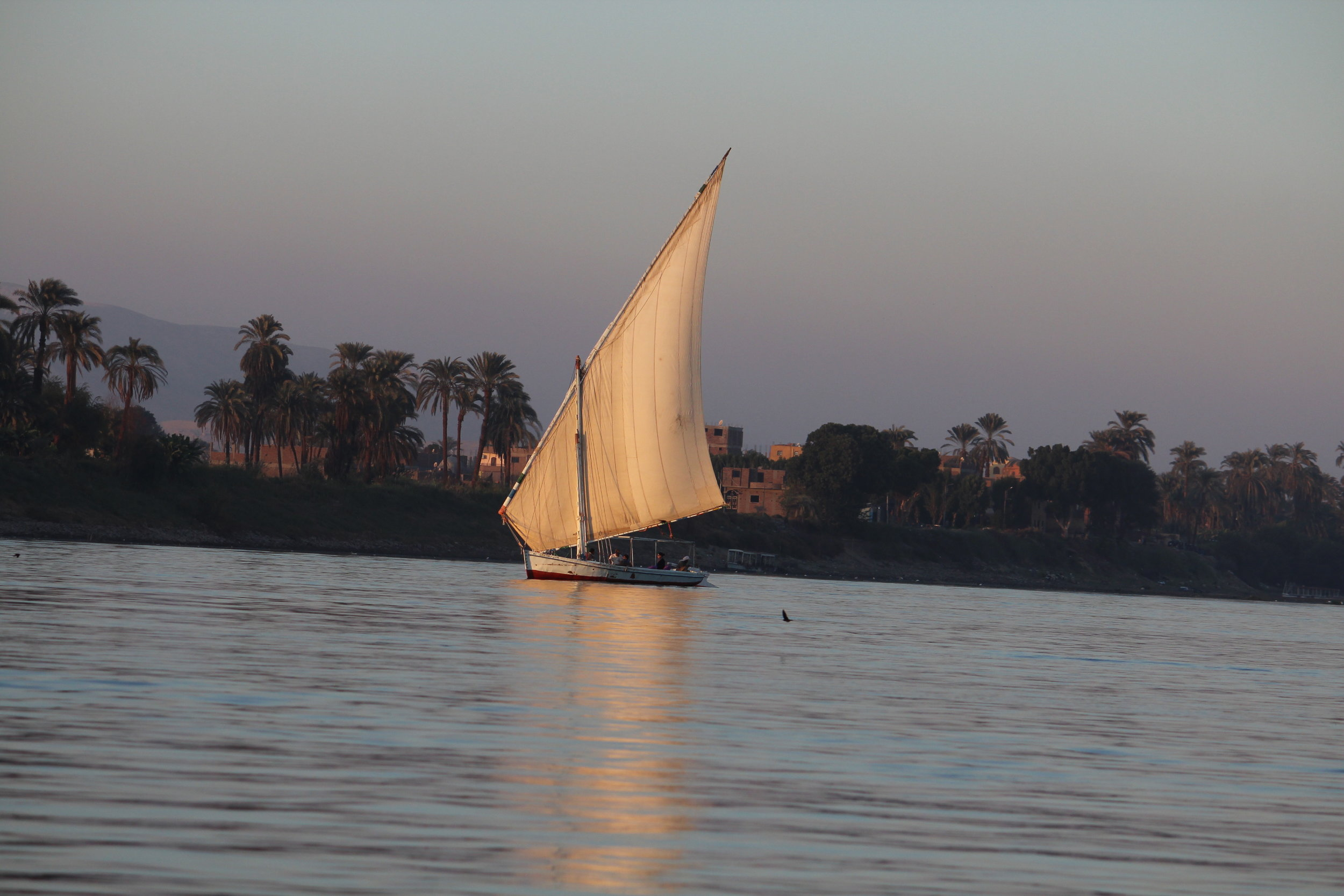 Egypt Nile Focus - 19 - 26 January 2020