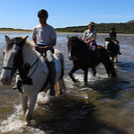 Horseback Riding - Another highlight will be riding horses on the beach at Derrynane Bay. Whether you've always wanted to ride a horse but never had the chance, or are experienced, our equestrian guide will provide the right level of —- for your experience and comfort level. Inspiring views and magnificent animals make for a day to remember!