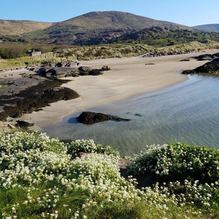 Derrynane Beach.jpg