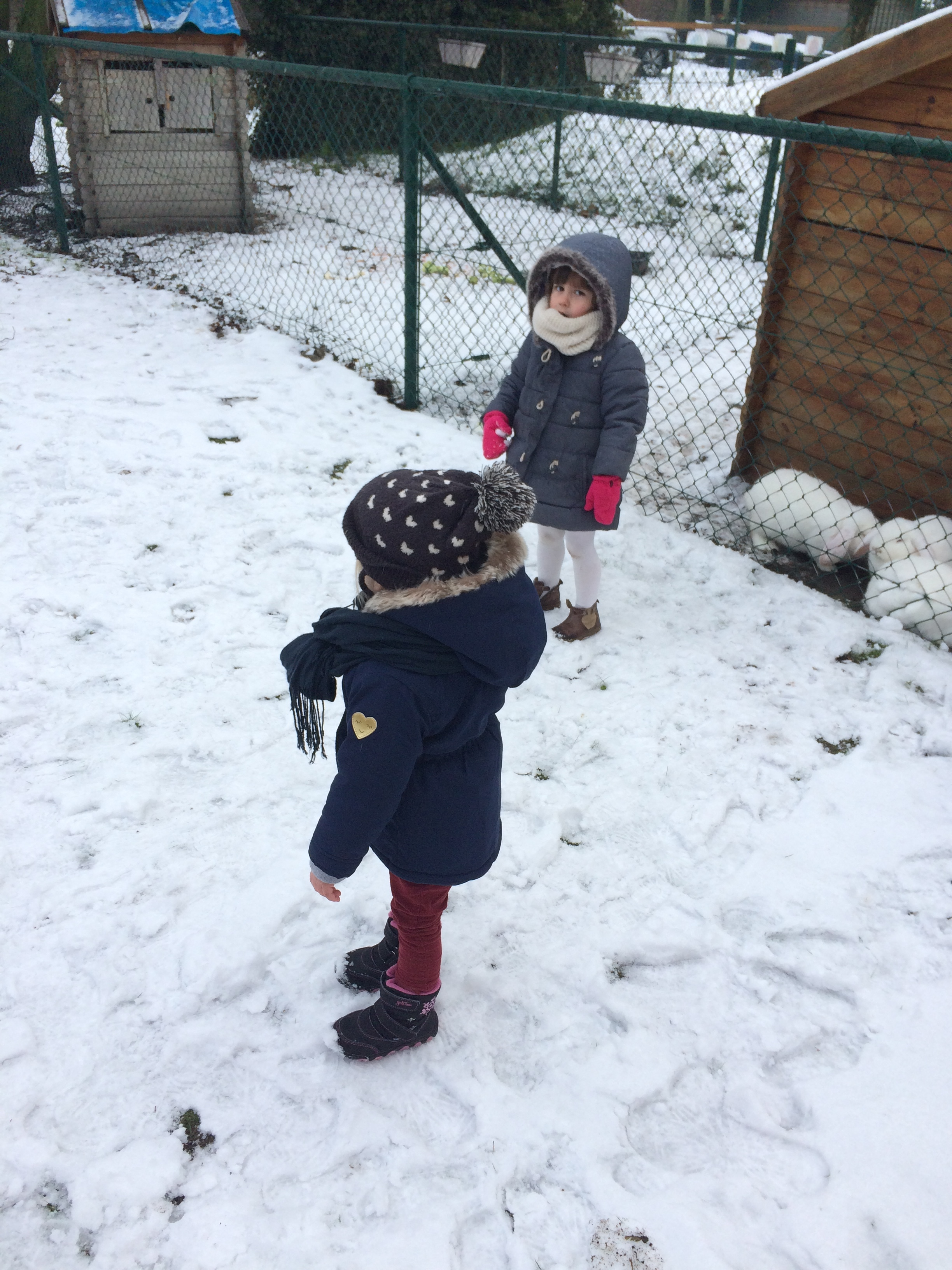 thema winter (111).JPG