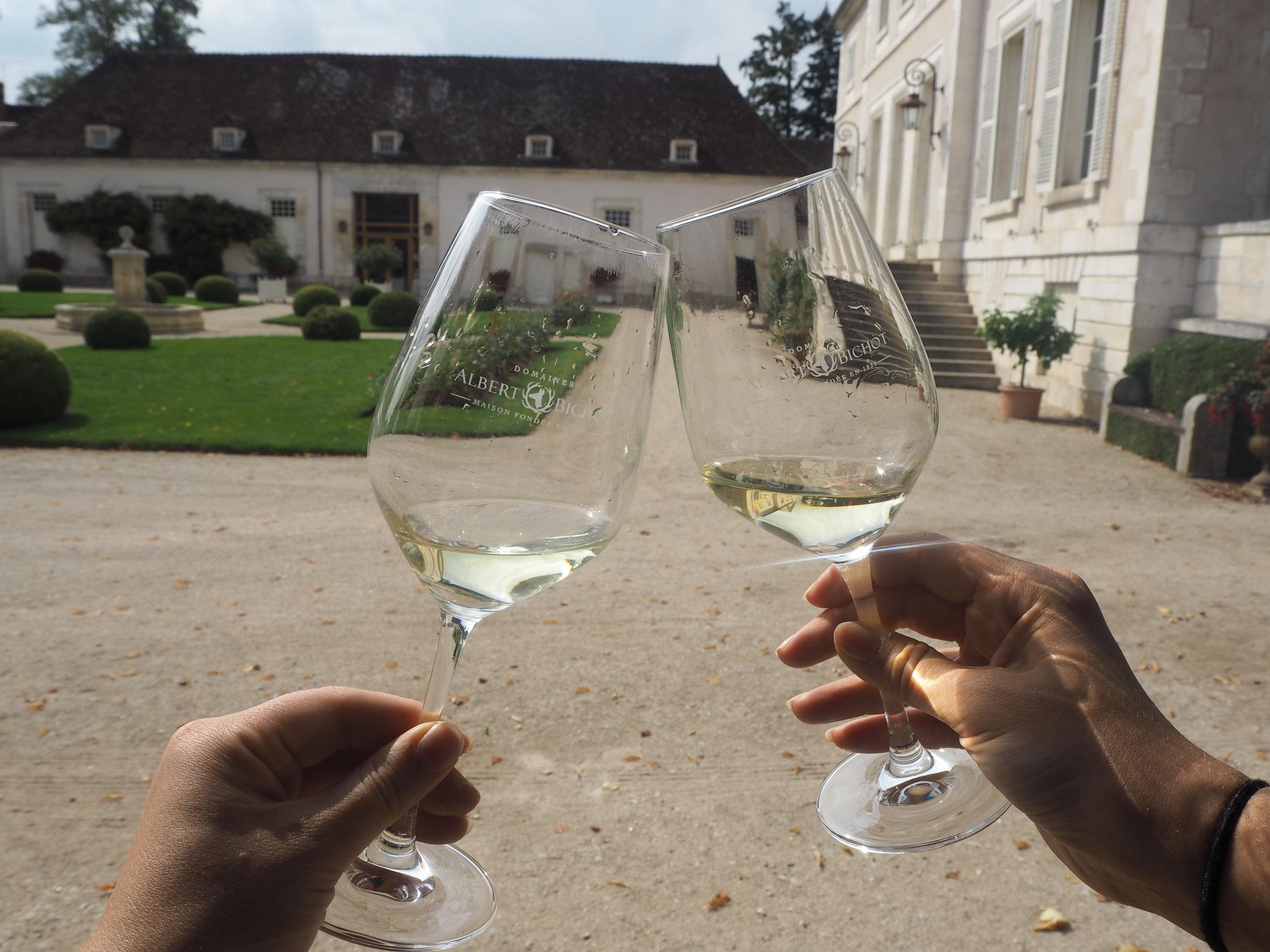 Baccus vierailemassa viinitilalla Burgundissa vuonna 2018.