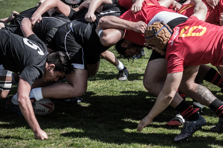 rugby_photo_07.jpg