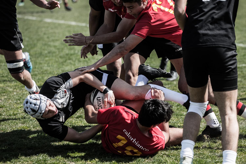 rugby_photo_12.jpg