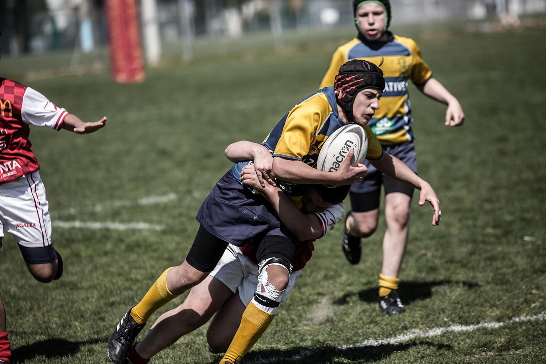 six_regions_rugby_07.jpg