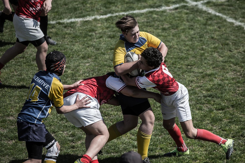 six_regions_rugby_09.jpg