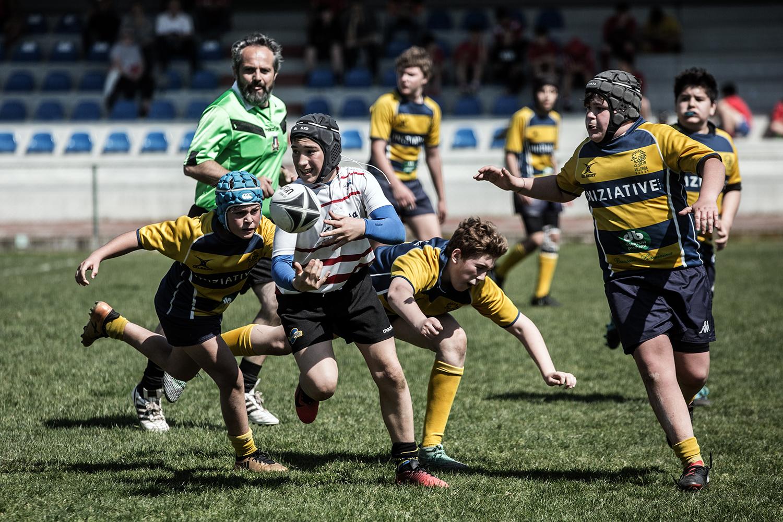 six_regions_rugby_12.jpg