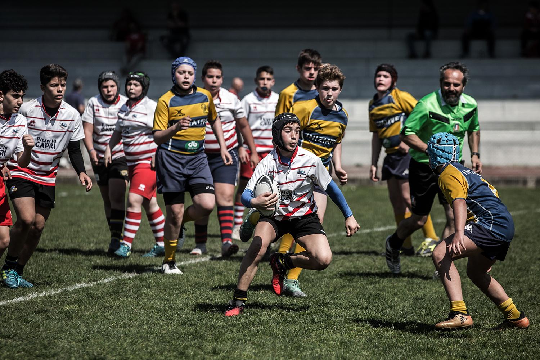 six_regions_rugby_11.jpg