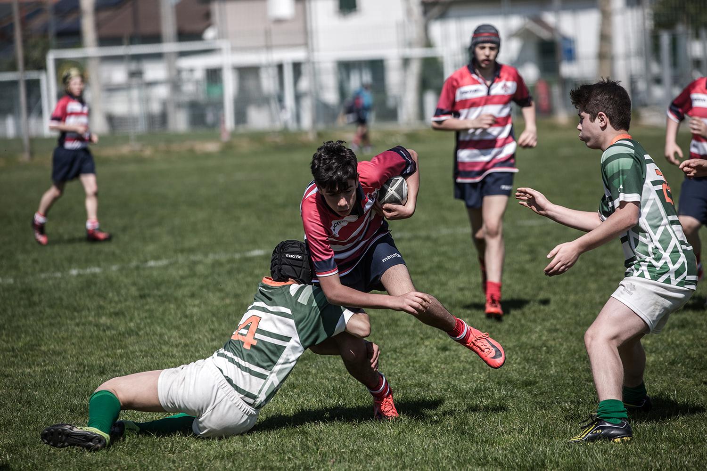 six_regions_rugby_15.jpg