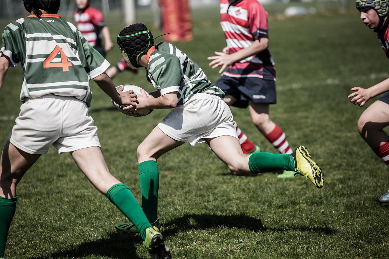 six_regions_rugby_16.jpg