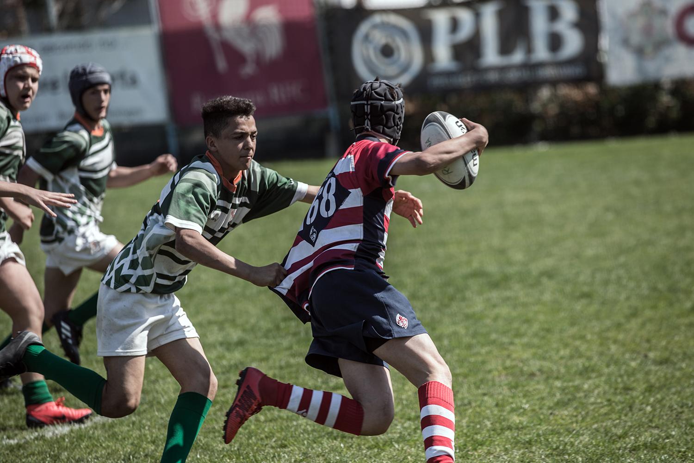 six_regions_rugby_19.jpg