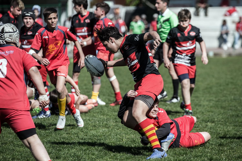 six_regions_rugby_28.jpg