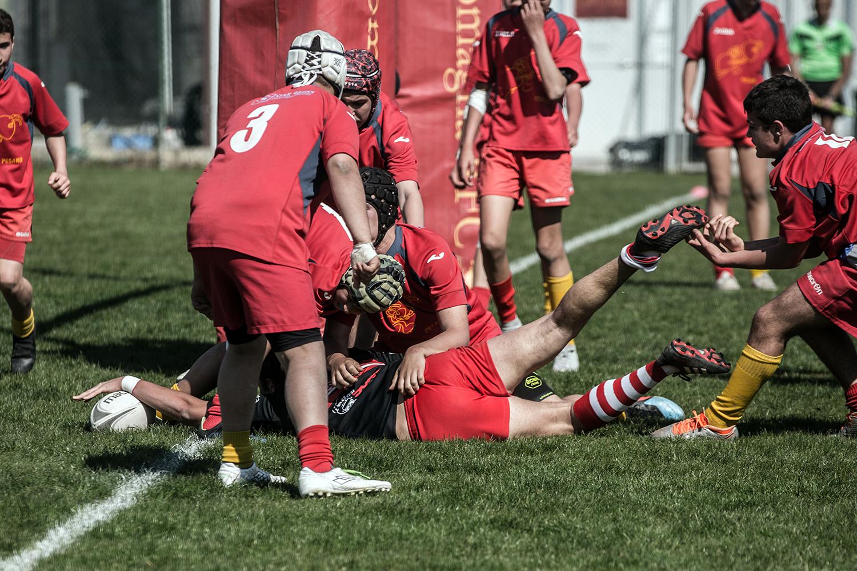 six_regions_rugby_32.jpg