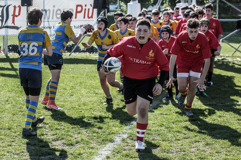 six_regions_rugby_34.jpg