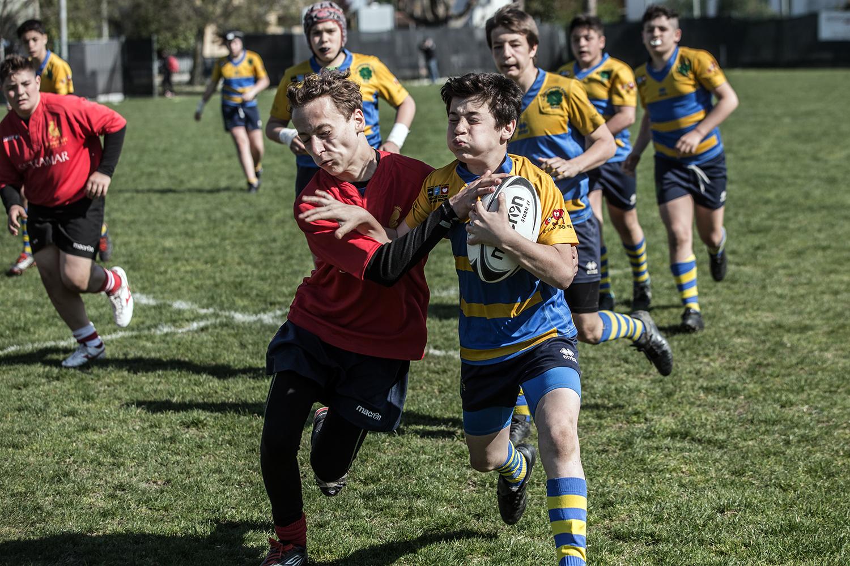 six_regions_rugby_35.jpg