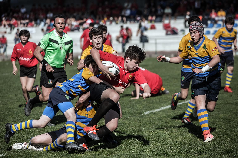 six_regions_rugby_38.jpg