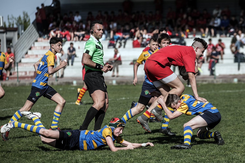 six_regions_rugby_37.jpg