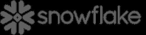 Copy of Copy of snowflake logo