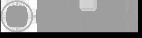 Netezza-last-logo.png