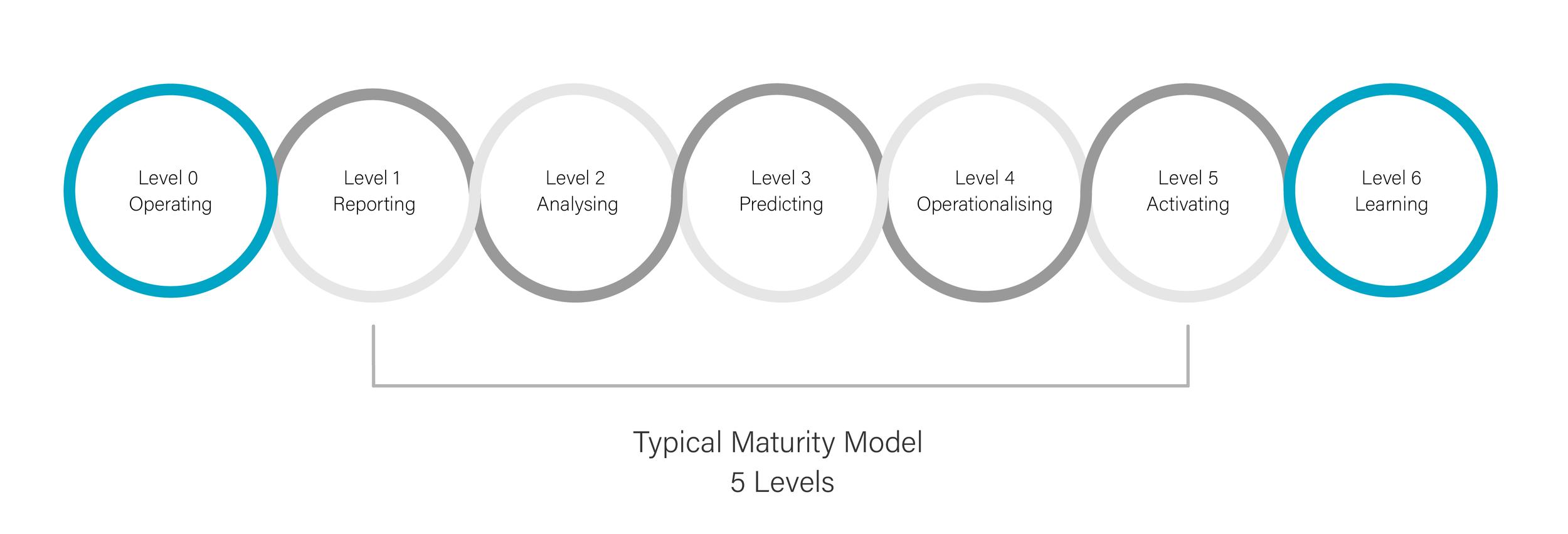 Maturity level chart