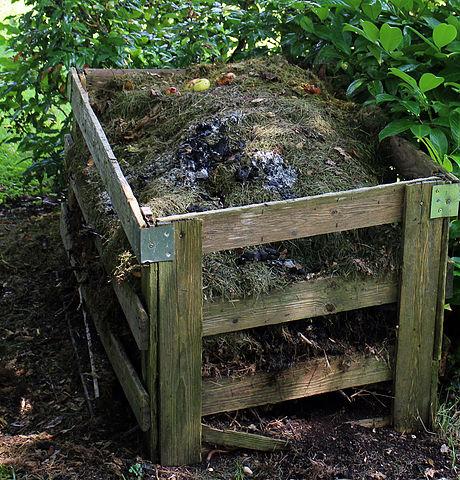 compost pile.jpg