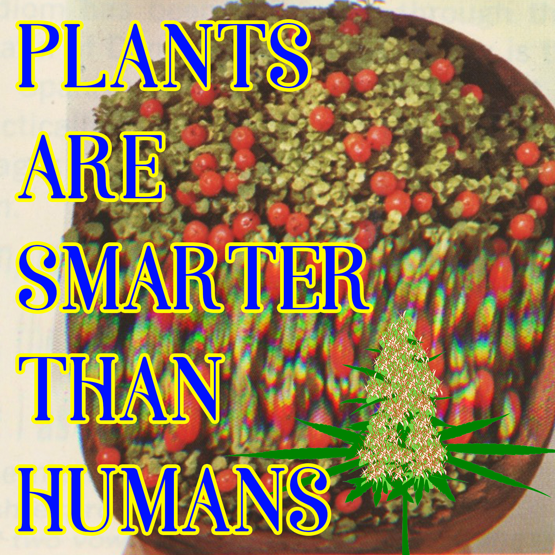 plants are smarter.jpg