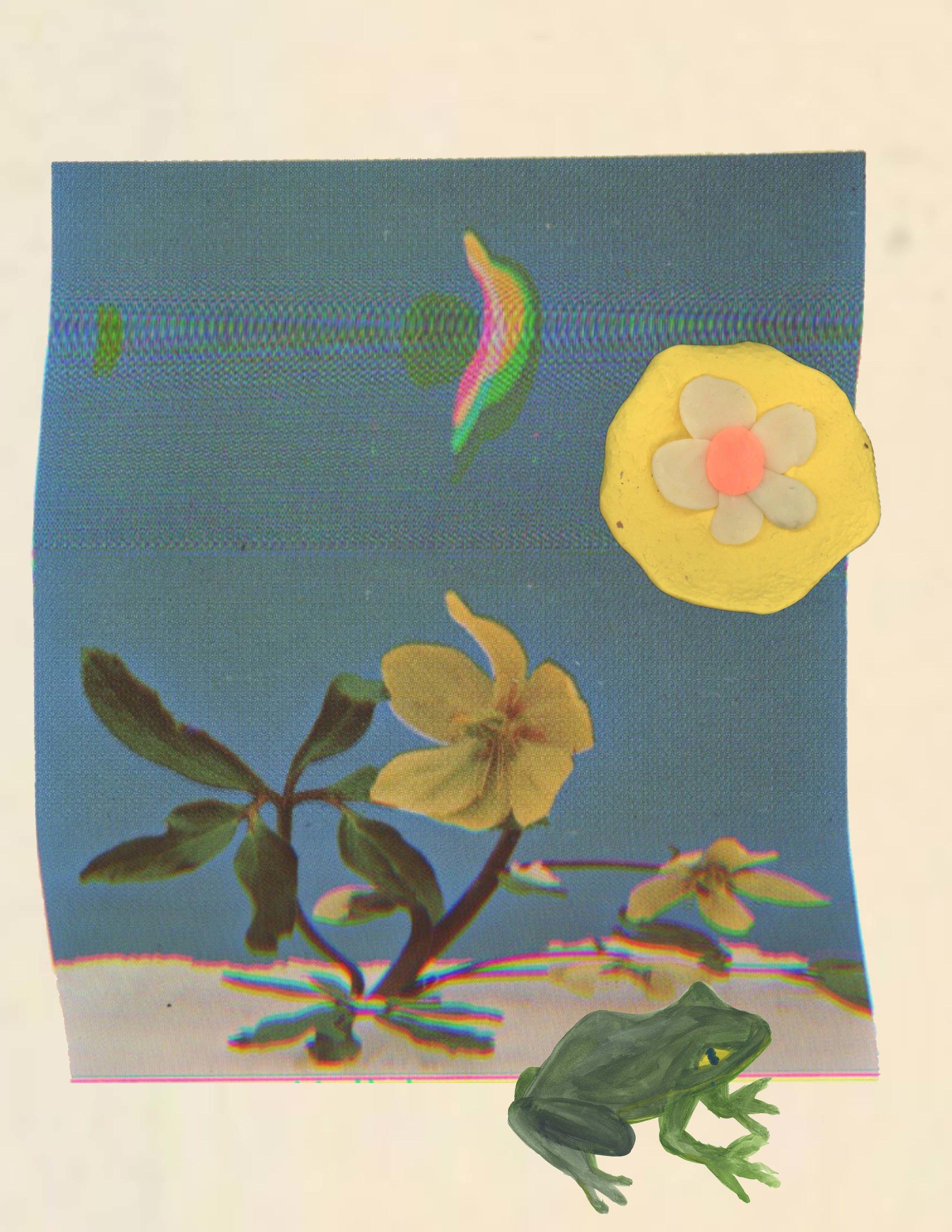 flower moon3.jpg
