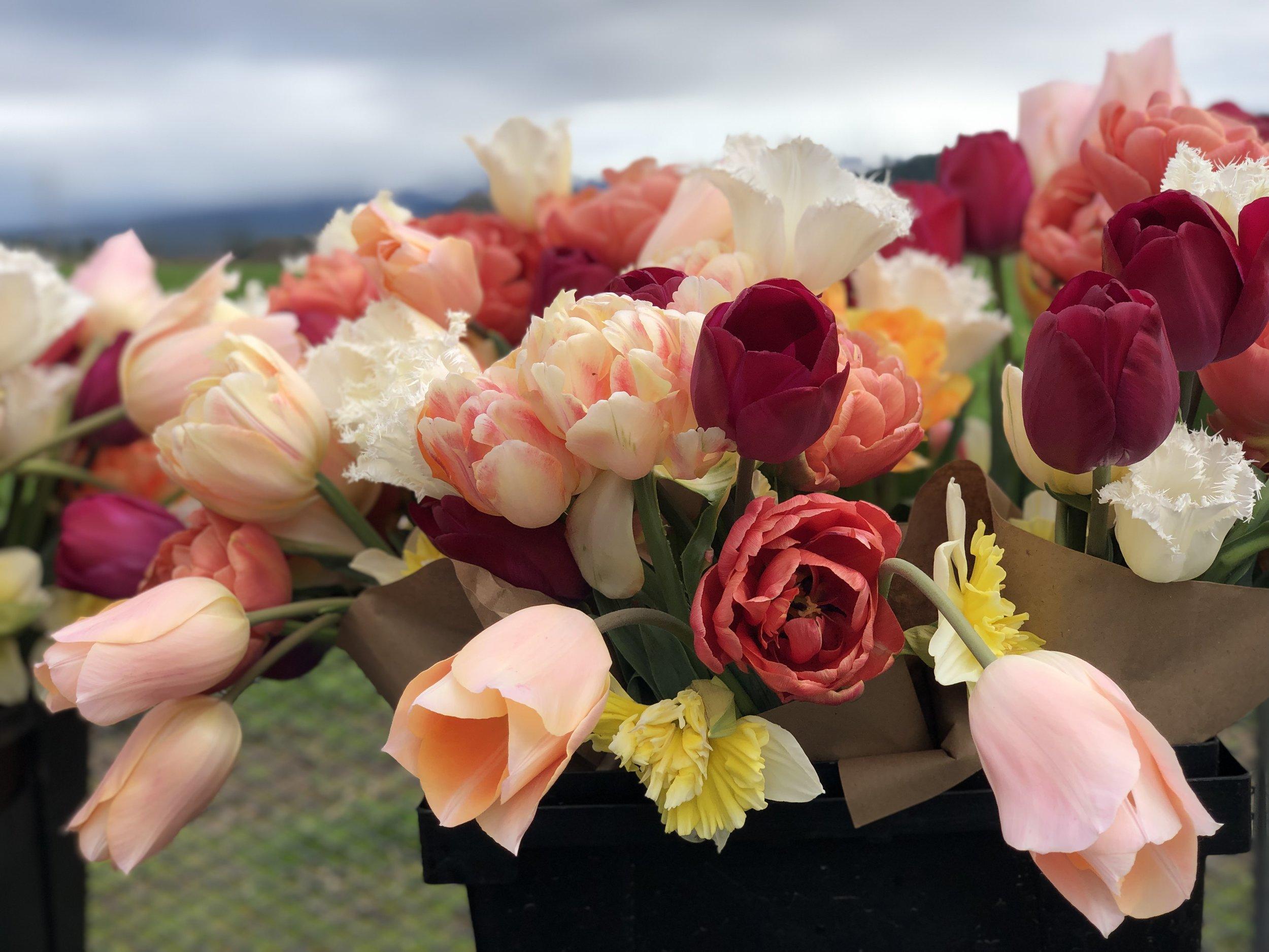 April 18 Bouquet