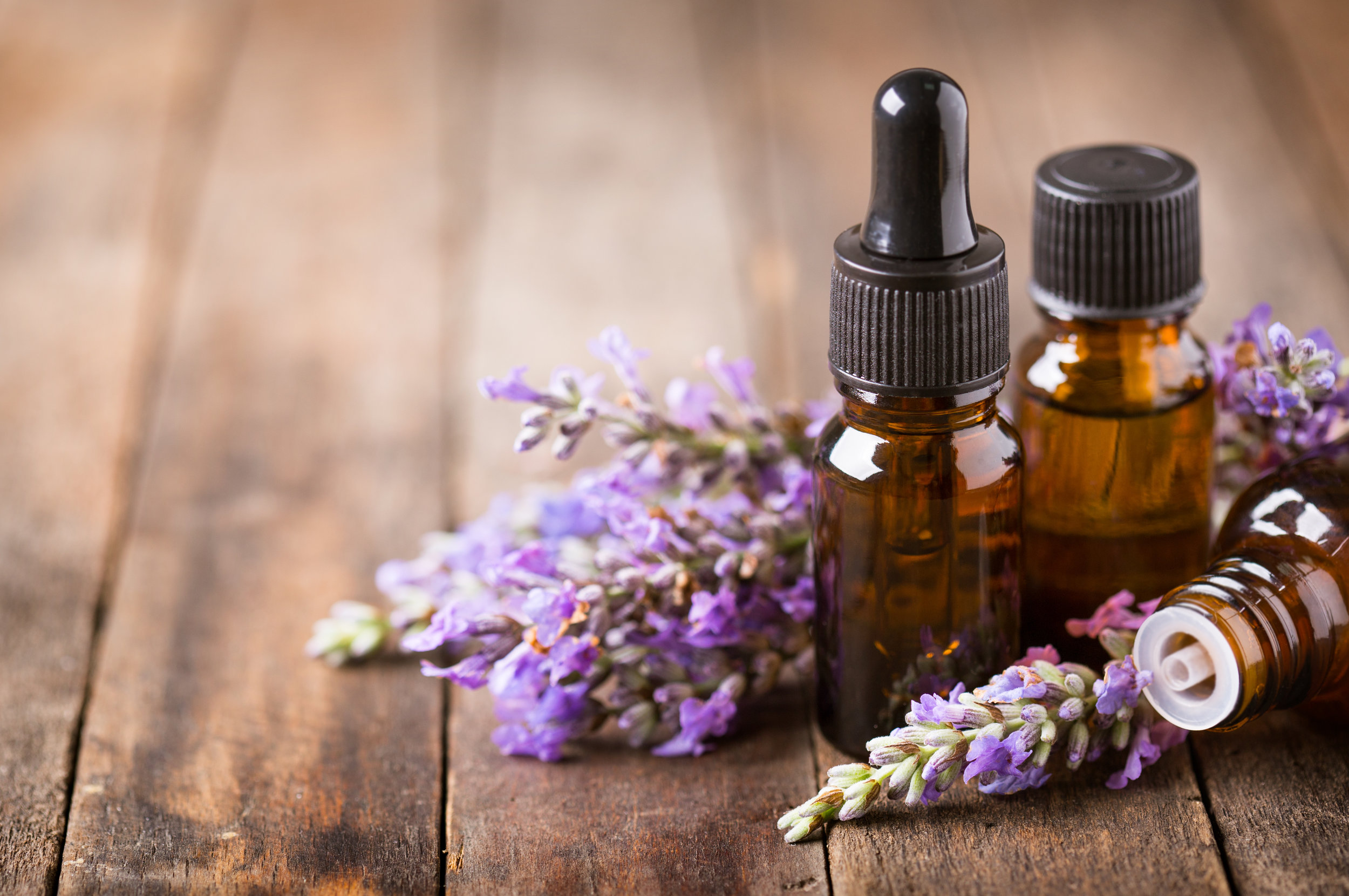 Learn About Lavender -