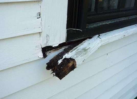 rot-window-trim.jpg