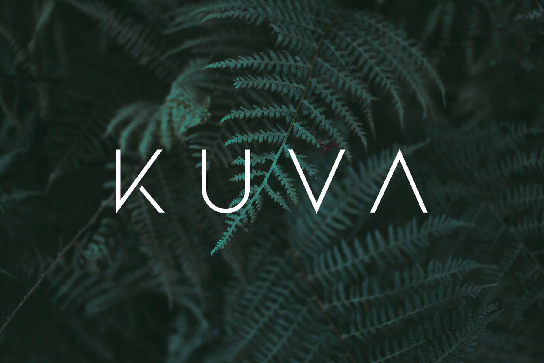 KUVA perks - Desk support staff / Client confirmation texts, emails or calls / Interactive website / modern botanical open space / Photo Studio / FREE street parking / No drama or attitude
