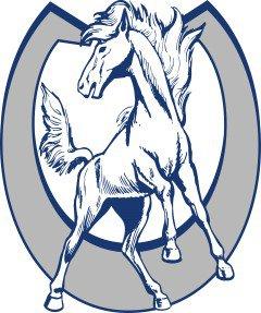 dobson_horseshoe__mustang_custom.jpg