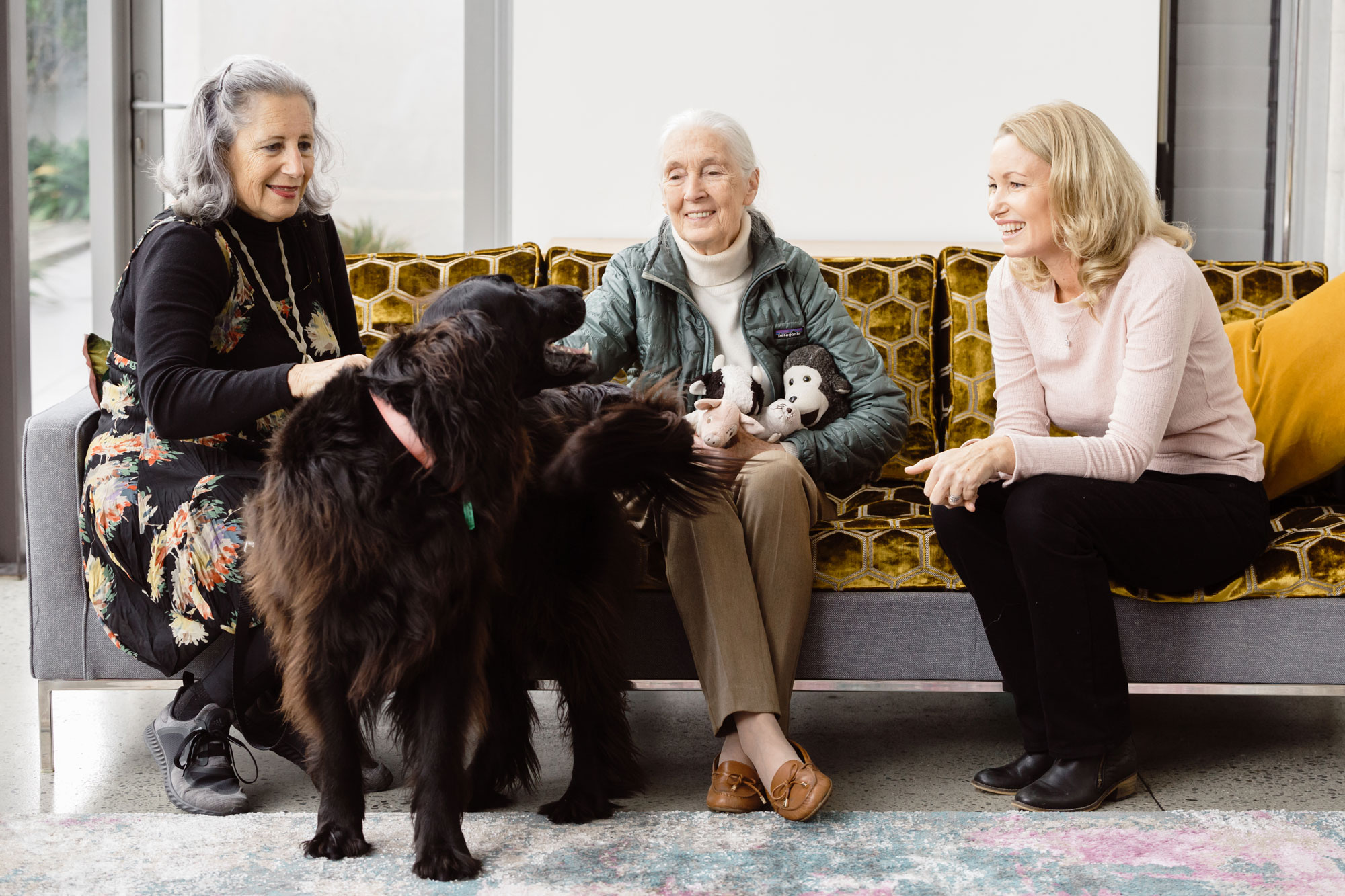 Melanie Vivian (right) CEO of the Jane Goodall Institute of New Zealand, with her mother and family dog greeting Jane.