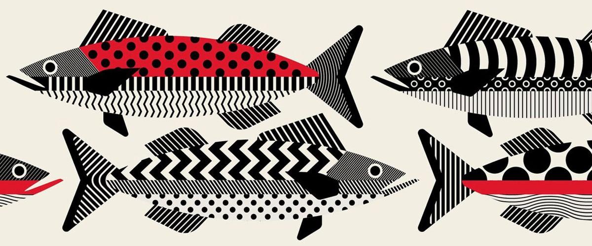 adobe-create-magazine-minimal-lines-fish.jpg