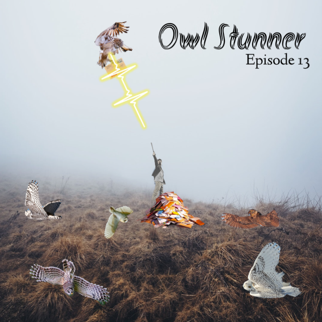 "A figure stands in the middle of a field, holding their wand aloft. A bolt of light jets from the wand and hits an owl overhead. Several other owls are upside down in the grass. At the figure's feet is a large pile of mail. In the upper righthand corner are the words, ""owl stunner."""