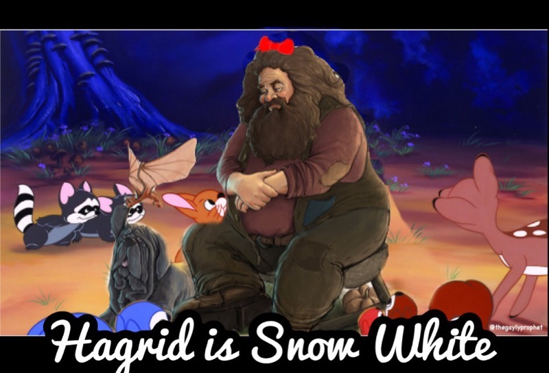 "A scene from the cartoon Snow White in which she sits in the woods, surrounded by small animals, but Snow White has been replaced by a cartoon rendering of Hagrid, who looks lovingly at the creatures and wears a red bow in her hair. In cursive letters across the bottom are the words, ""Hagrid is Snow White."""