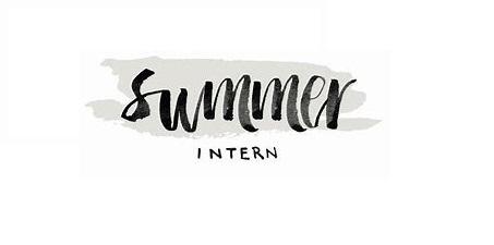 Summer internships available  -