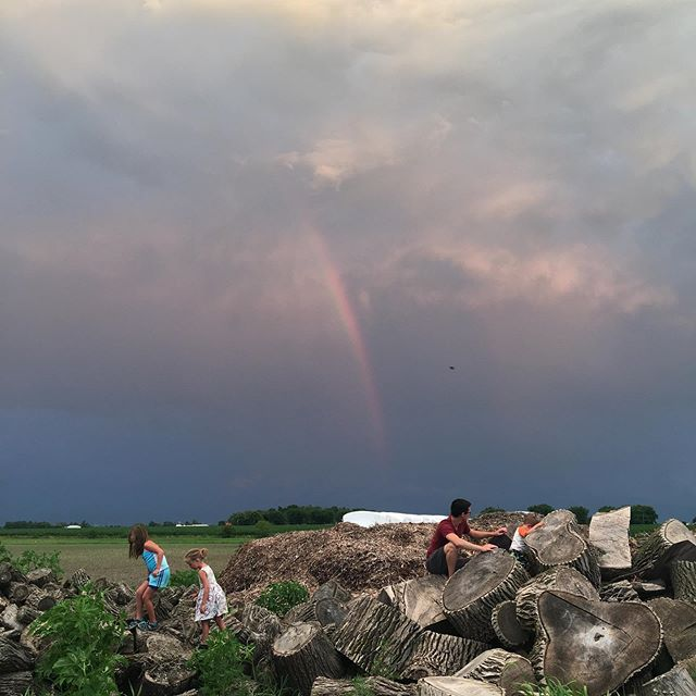 Those summer nights 🌈🌈🌈 #familyfarm #july #familynight #organicfarm