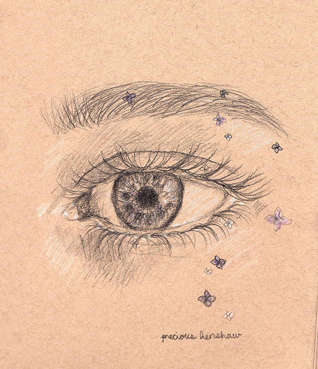 eye study   graphite, white charcoal, & colored pencil on toned tan paper