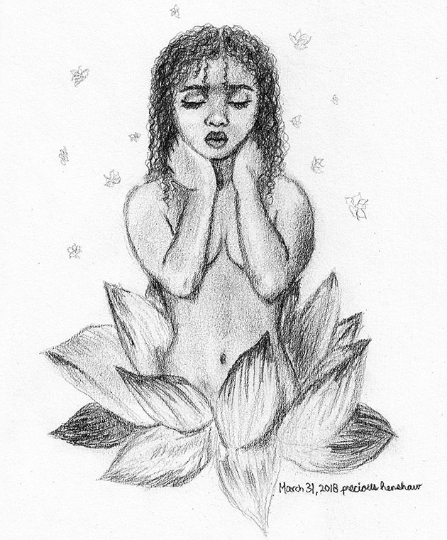 nymphaea   graphite on paper