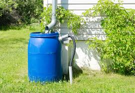 simple rain barrel.jpg