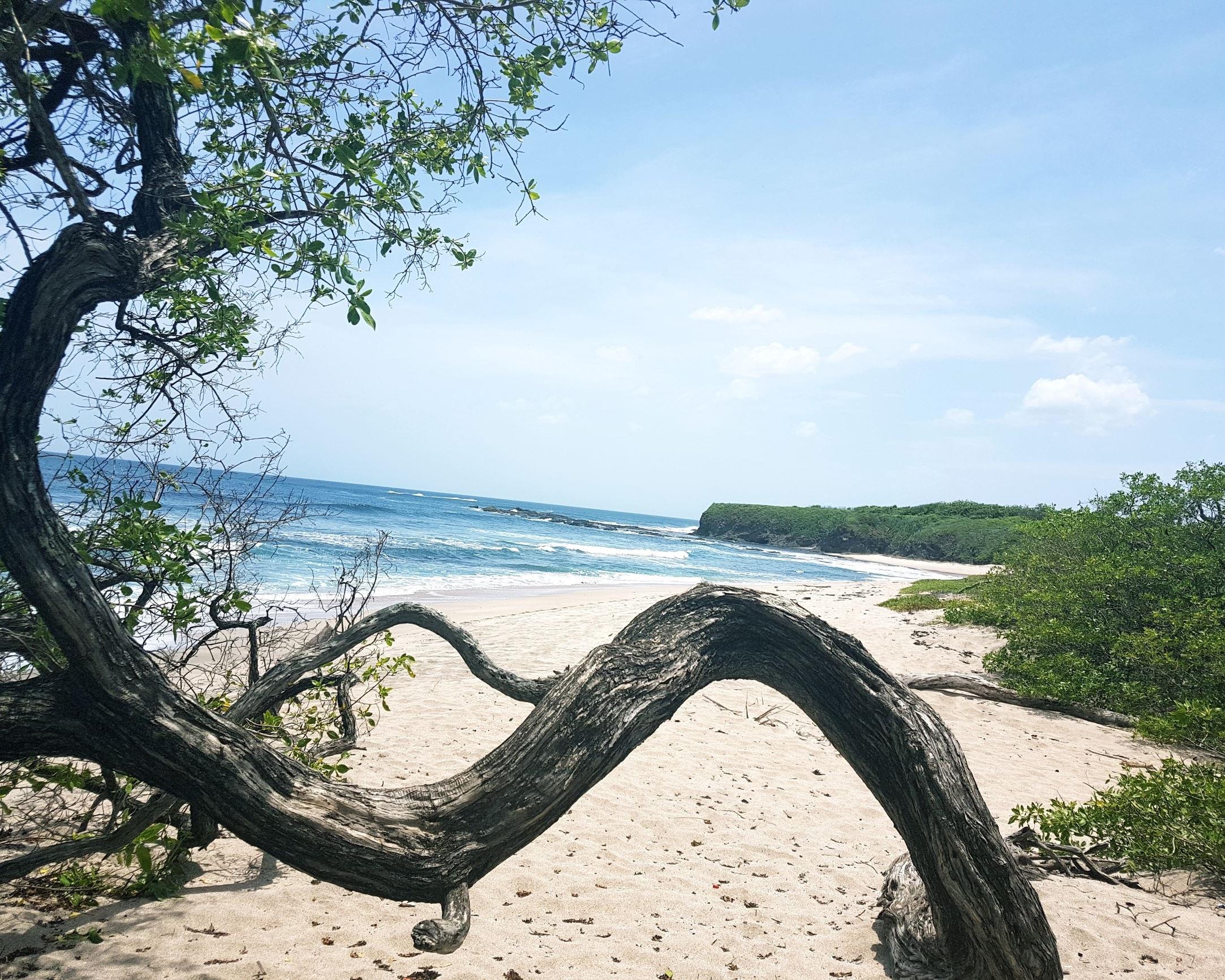 Playa+Blanca.jpg