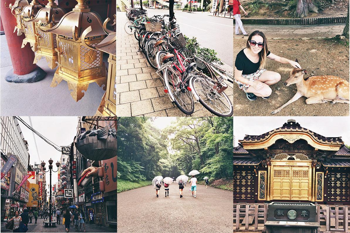 japan-adventures.jpg