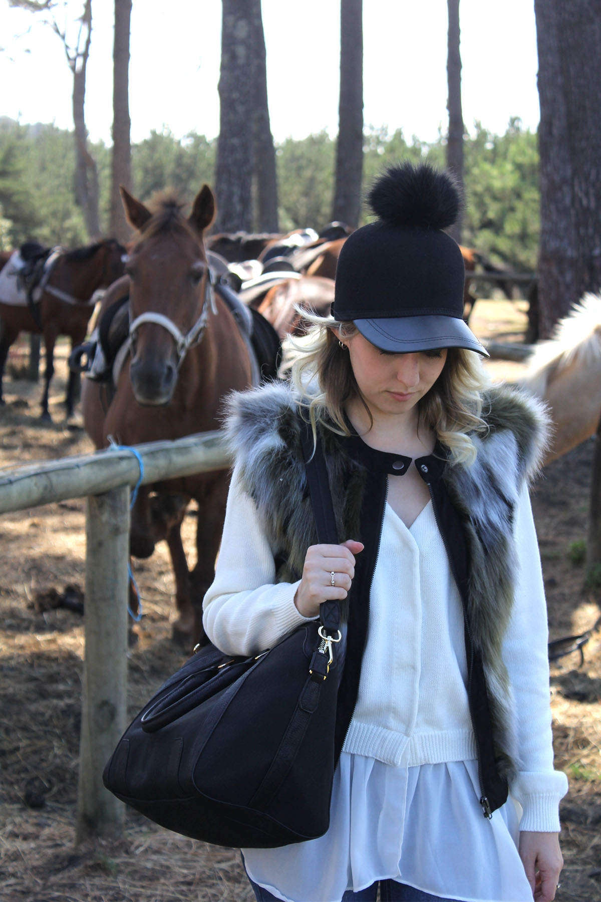 Muriwai-horses_0000_Horses-12.jpg
