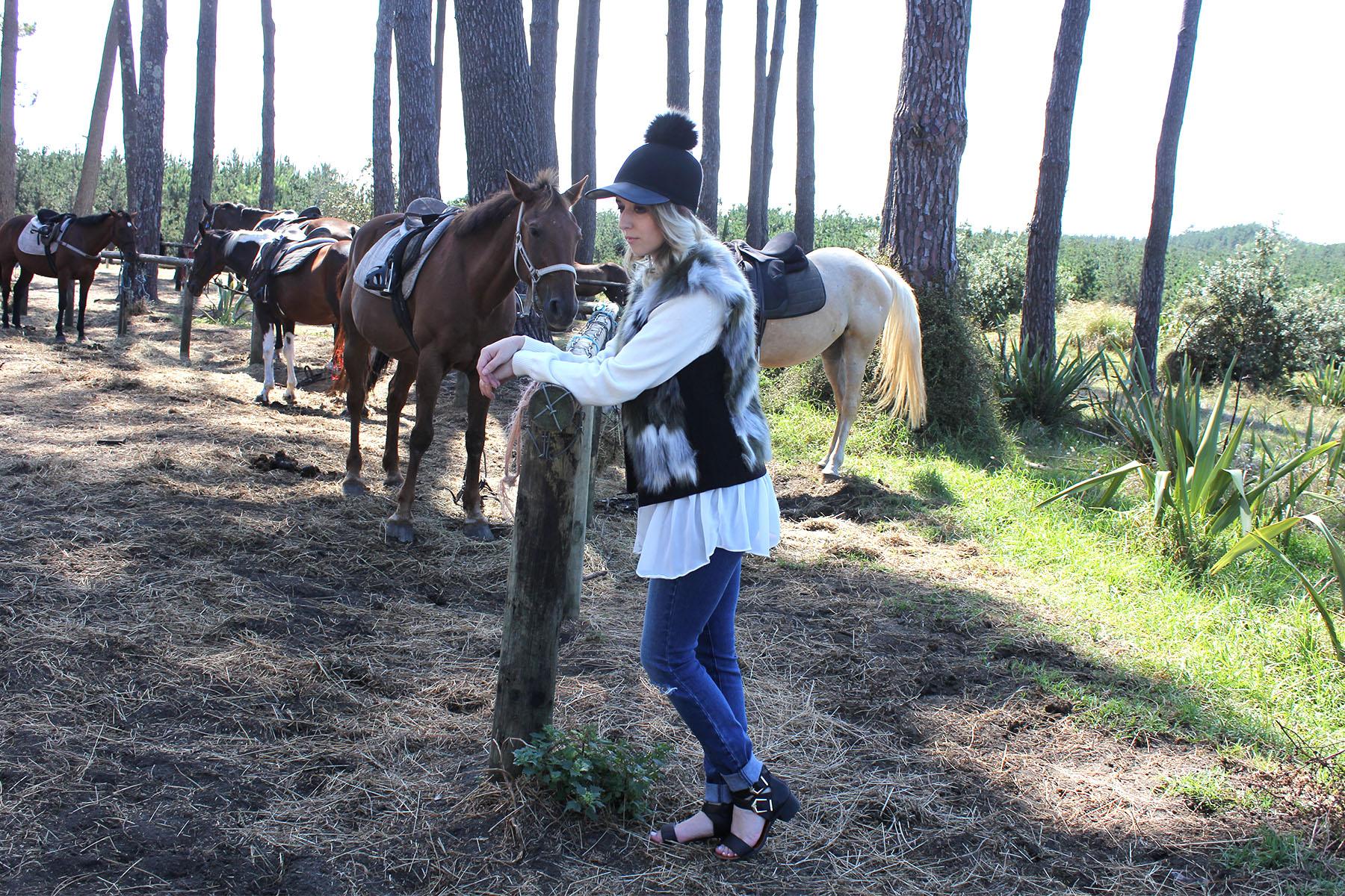 Muriwai-horses_0001_Horses-9.jpg