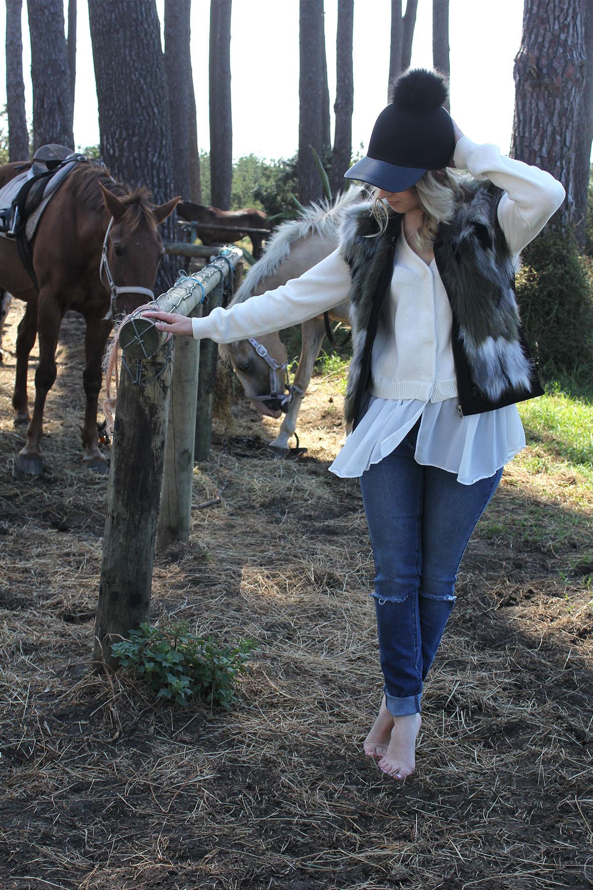 Muriwai-horses_0002_Horses-8.jpg