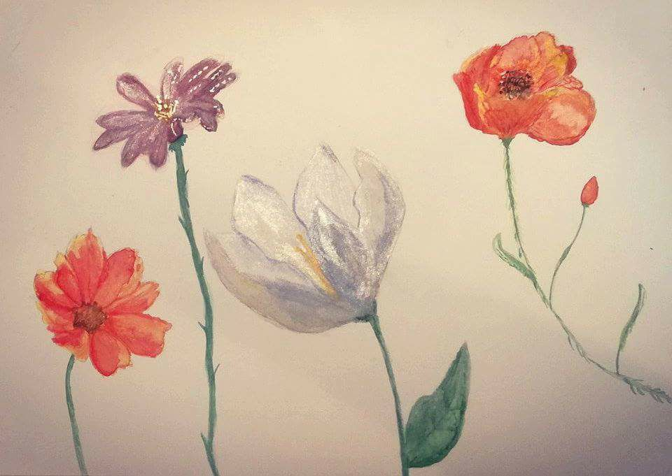 Watercolor by Mater Terra