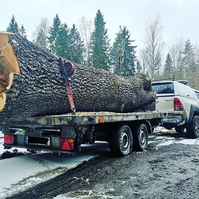 """Idag har vi lastat en """"liten"""" stock 😂🌳 Ett stort tack till mannen som hjälpte till att lasta med sin traktor. #trädfällning #trädbeskärning #trädgårdsskötsel #häckklippning #utemiljö #grävmaskin #transporter #gräsmatta #thuja #stubbfräsning #stubbe #plantering #arborist #trädklättring #sektionsfällning #kranbil #traktor"""