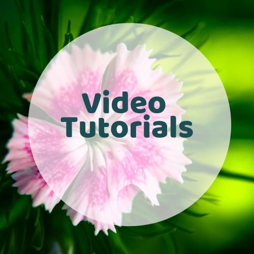 Video tutorials on psychic and mediumistic development.